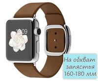 Apple Watch 38mm Stainless Steel Modern Buckle Brown (160-180mm) (MJ3D2)