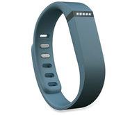 Фитнес браслет Fitbit Flex (Slate) Large