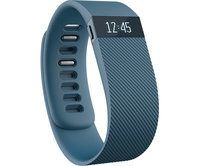Фитнес часы Fitbit Charge (Large/Slate)